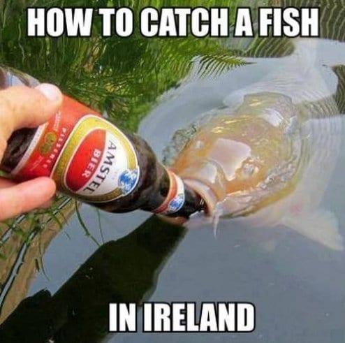 Funny fish memes - photo#11