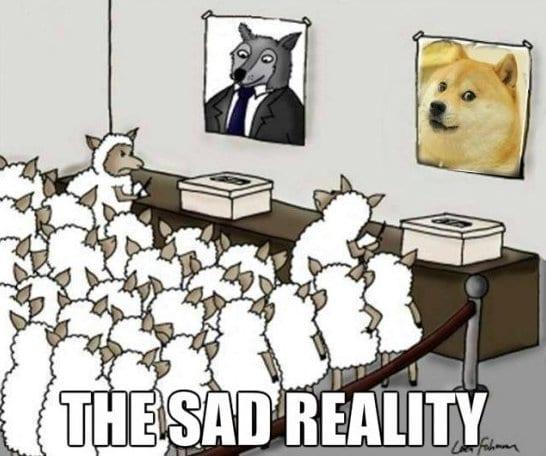 funny-2014-reality
