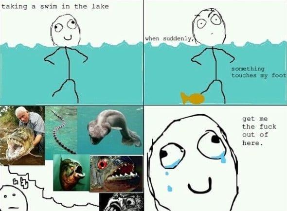 funny-image-2014-swim