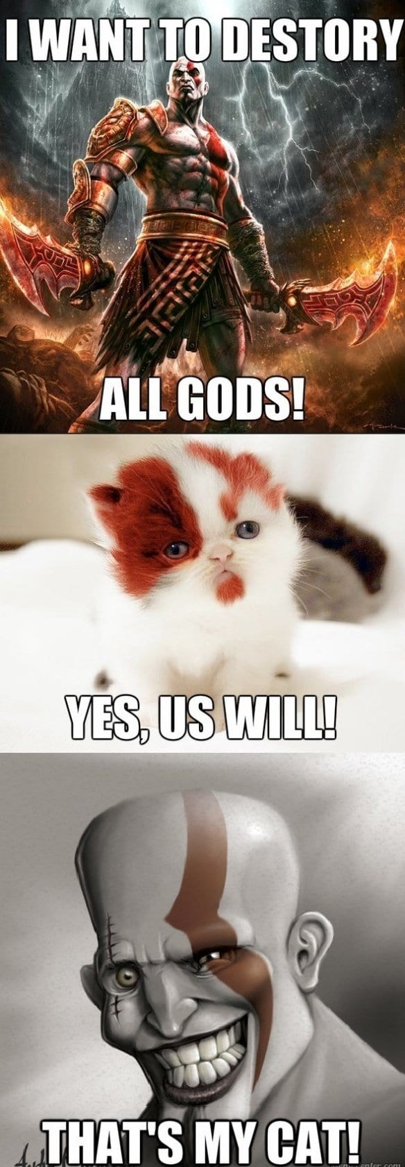 funny-images-the-kitteh-of-war
