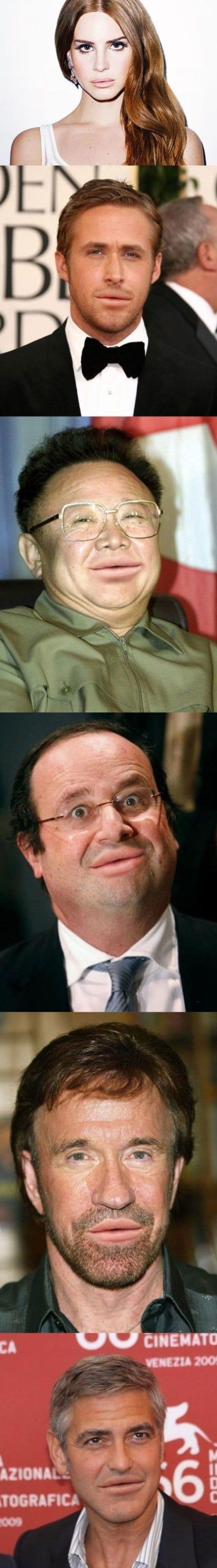 funny-lana-del-rey-lips