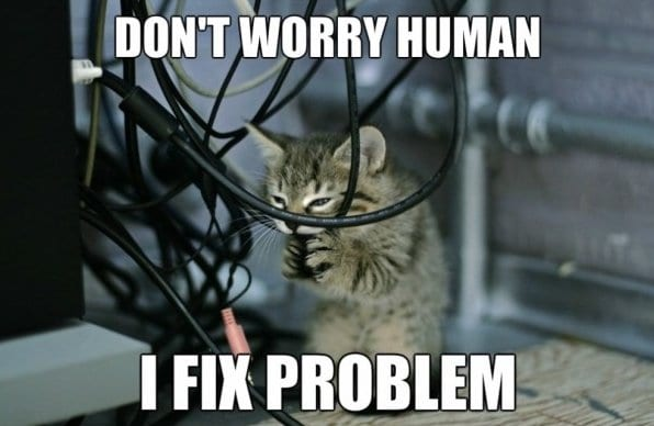 funny-pictures-cat-engineers