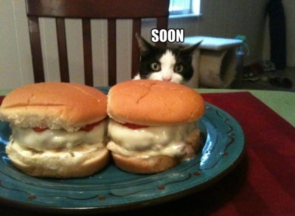 funny-pictures-you-will-be-mine