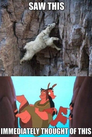 funny-pictures-lol-meme-2014-llama