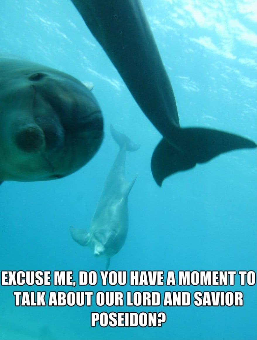 Poseidons Witnesses - Funny MEME GIF