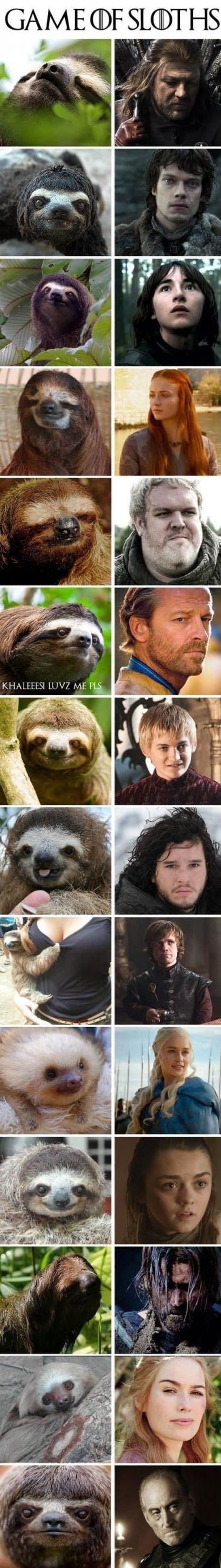 jokes-2014-game-of-sloths