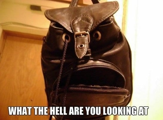 jokes-2014-grumpy-bag