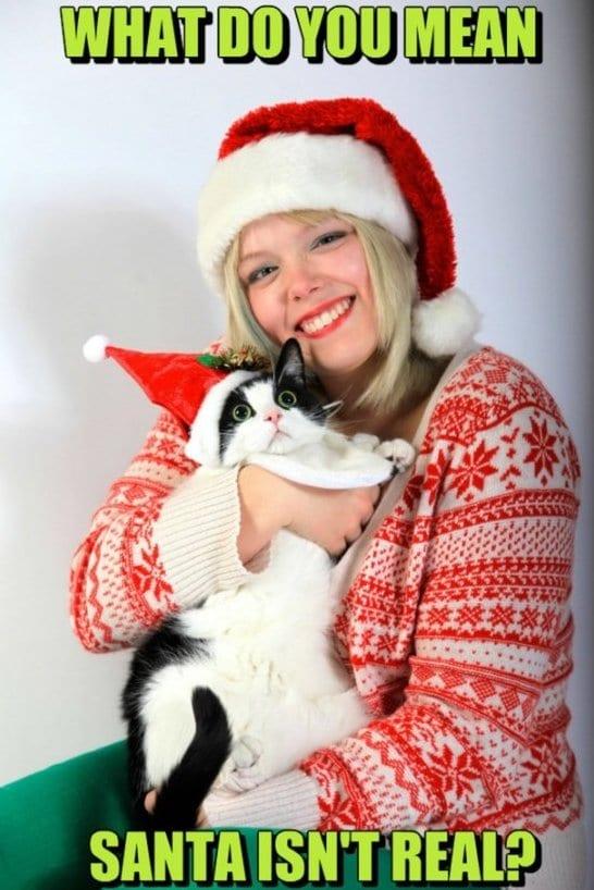 jokes-2014-santa-isnt-real