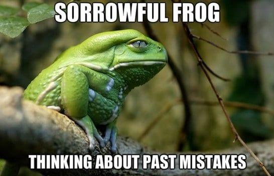 jokes-2014-sorrowful-frog