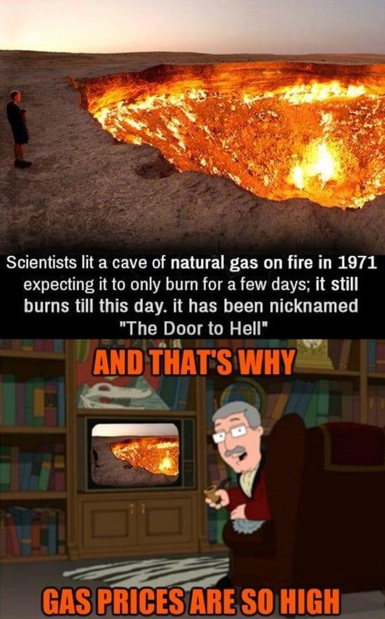 jokes-2014-stupid-scientists