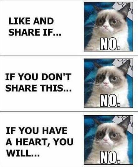 lol-grumpy-cat-vs-facebook