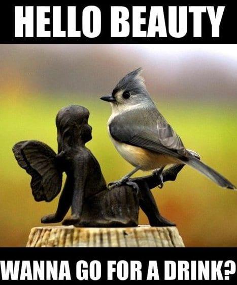 lol-hello-beauty