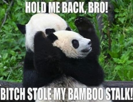 lol-hold-me-back-bro