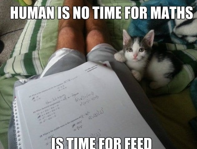 lol-human-is-no-time