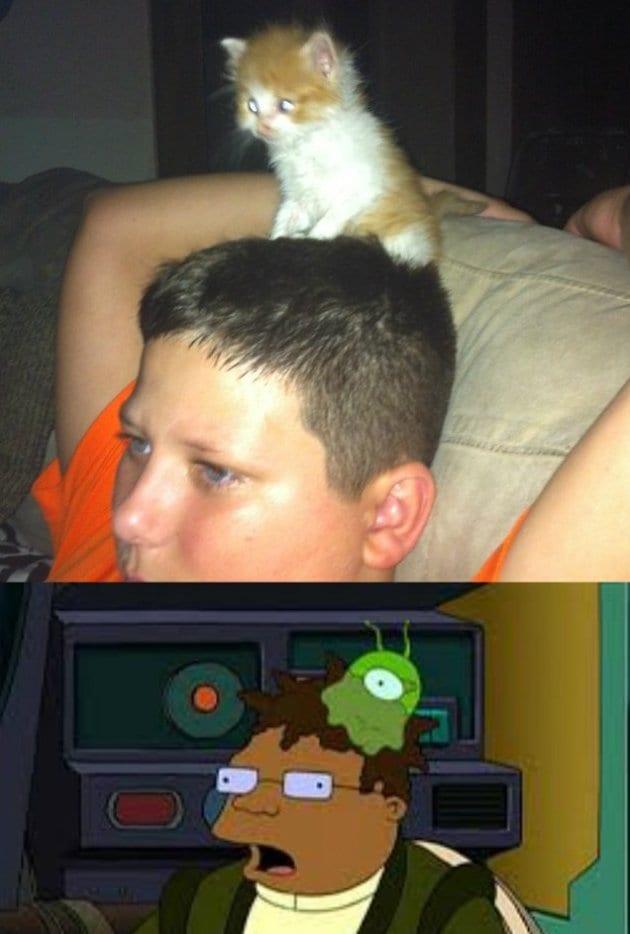 lol-meme-haha-2014-brain-slug