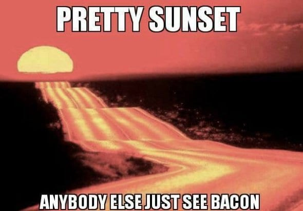 lol-pics-2014-sunset-vs-bacon