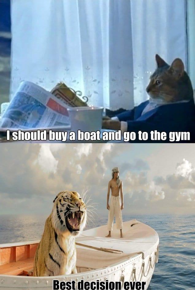 meme-i-should-buy-a-boat