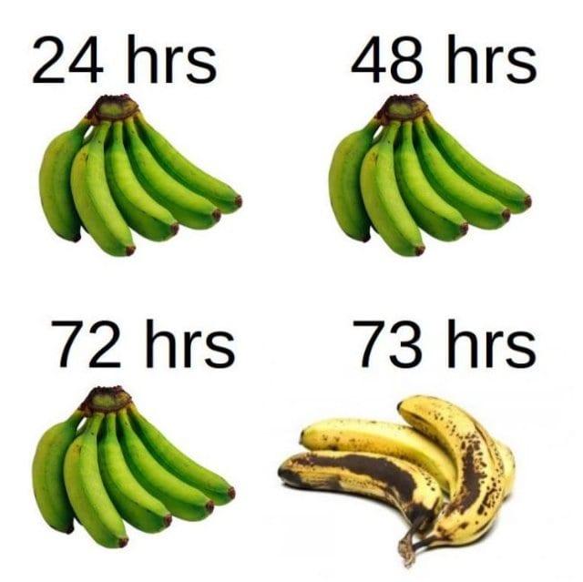 meme 2014 banana aging timeline