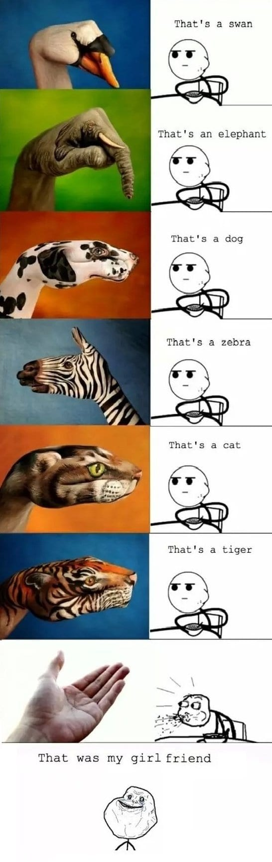 Funny Meme Pictures 2014 : Meme
