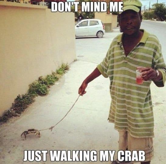 meme-2014-my-crab