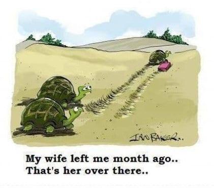 meme-2014-my-wife-left-me