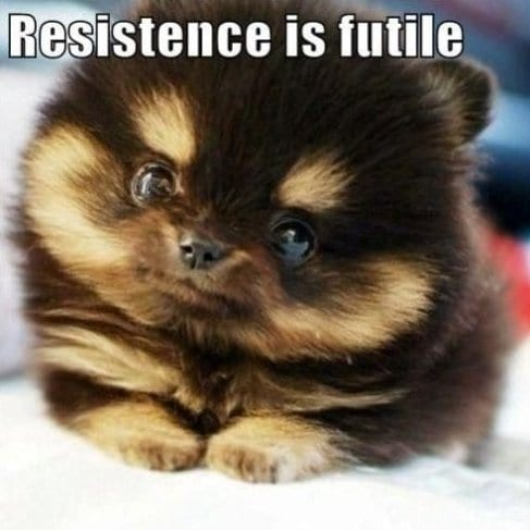 meme-lol-resistence-is-futile