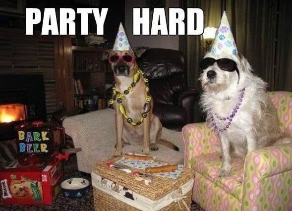 Funny Meme Pictures Party : Meme lol party hard