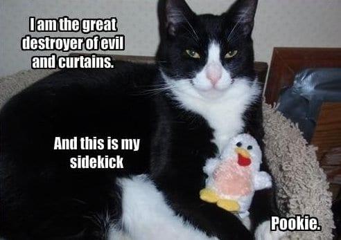 meme-lol-pookie-is-vicious