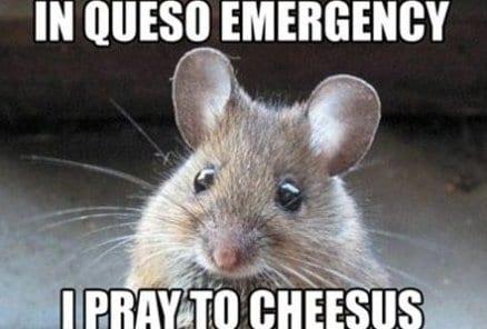 meme-lol-pray