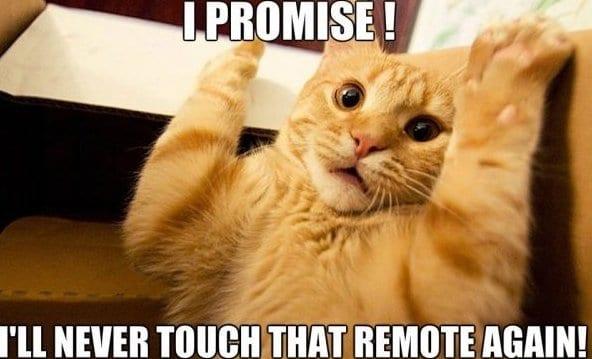 meme-lol-promised