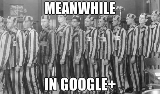 meanwhile-in-google-plus-2014