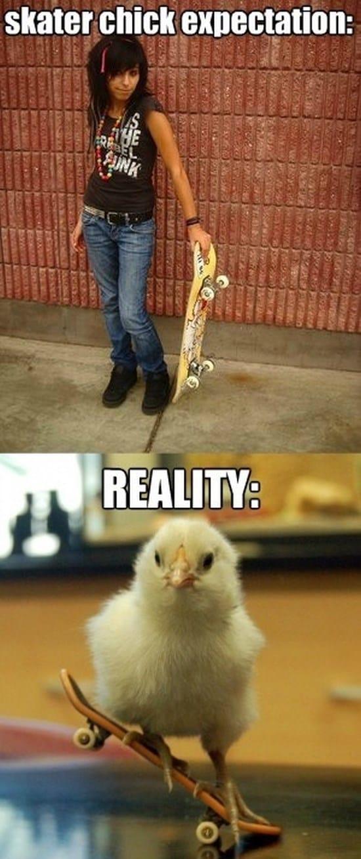 funny-skater-chick-meme
