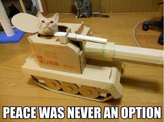 peace-funny-meme-and-gif