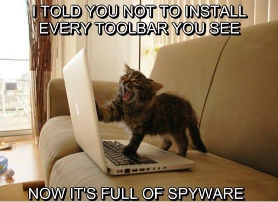 toolbar-cat-funny-meme-gif