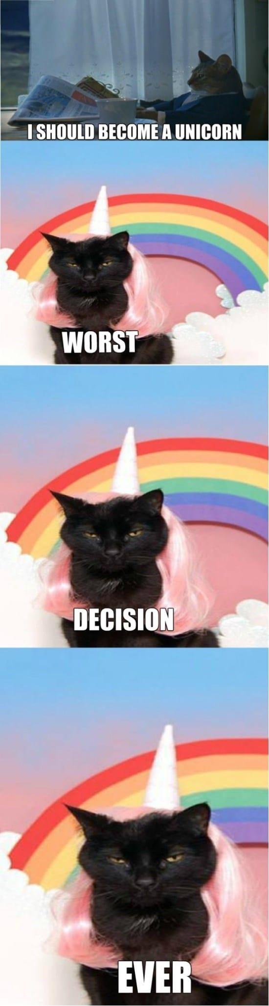 unicorns-funny-meme-gif