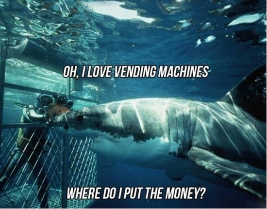 vending-machine-funny-meme-gif