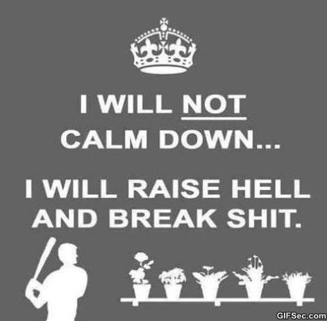 calm-down-meme