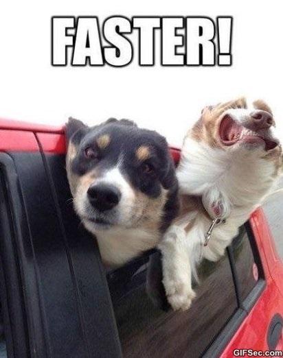 faster-meme