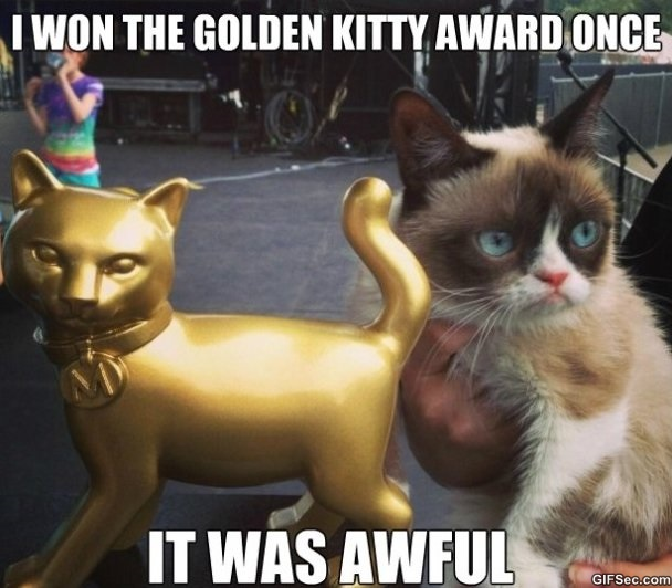grumpy-cat-is-not-impressed-meme