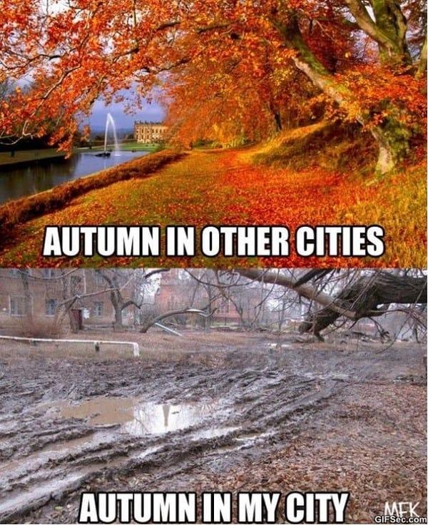 autumn-meme
