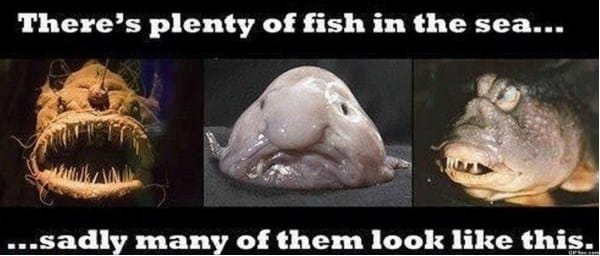 plenty-fish-in-the-sea-meme