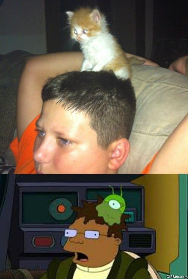 brain-slug-meme