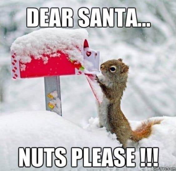 dear-santa-meme