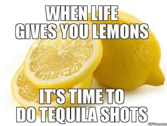 when-life-gives-you-lemons-meme