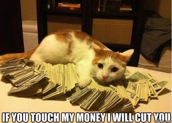 gangsta-cat-meme