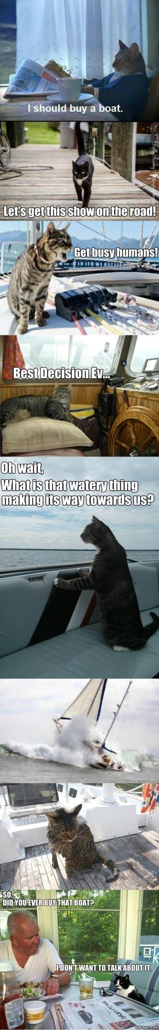 i-should-buy-a-boat-meme