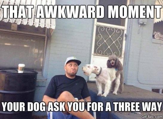 Funny Meme Moments : Awkward moment meme