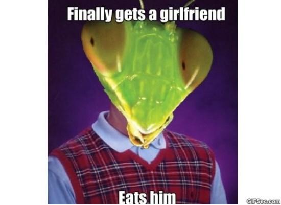 bad-luck-mantis-meme-2015