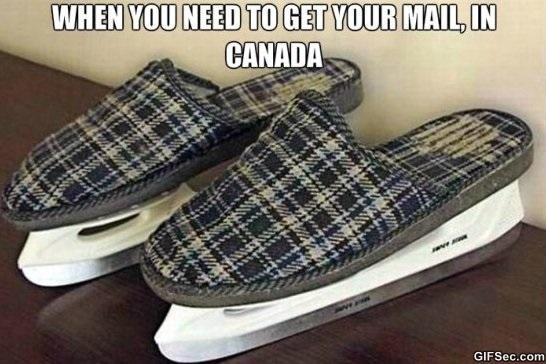 canadian-fashion-meme-2015