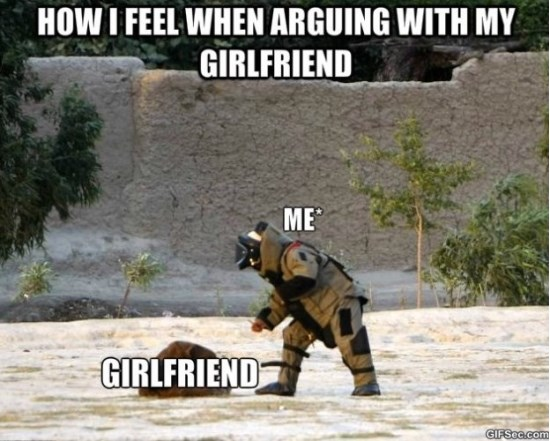 fighting-with-my-girlfriend-meme-2015